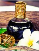 101 lợi ích và hướng dẫn sử dụng tinh dầu - Phần 2