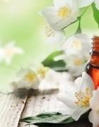 Tiết lộ thông tin tinh dầu hoa nhài có tác dụng làm mỹ phẩm